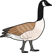 canadan goose clipart